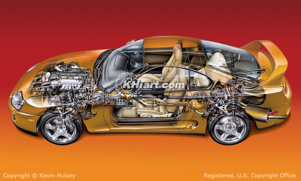 Cutaway sports car profile